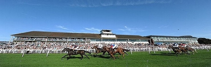 lingfield-grandstand-pic-cropped-2